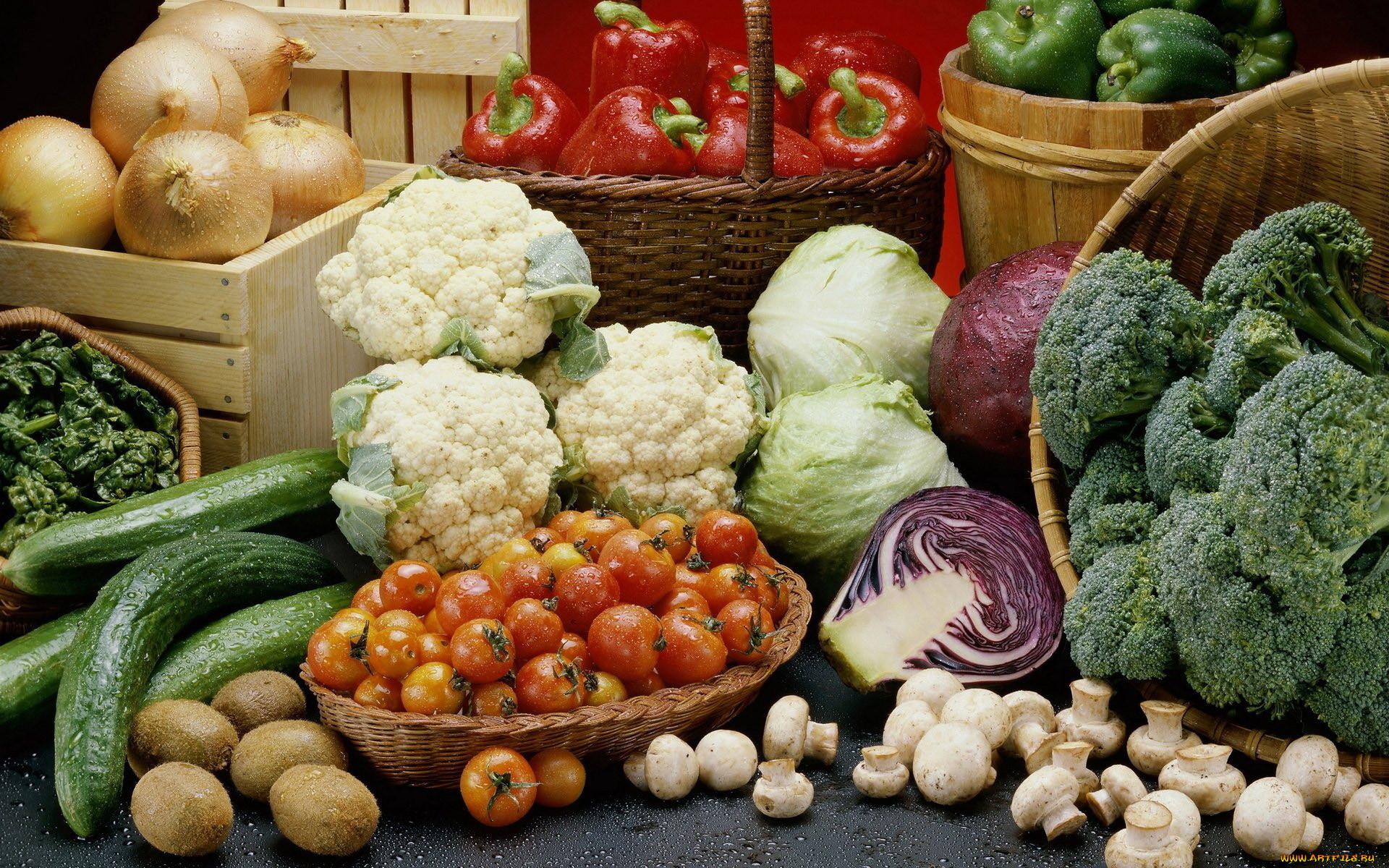 грибы овощи картинка